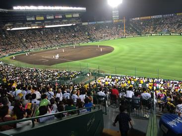 14年 6月 阪神応援